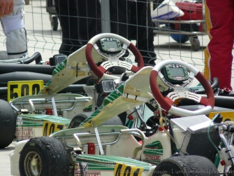 Series Rotax 2014 Karting Correcaminos (11)