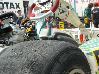 Series Rotax 2014 Karting Correcaminos (13)