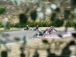 Series Rotax 2014 Karting Correcaminos (4)