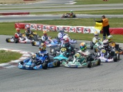 Series Rotax 2014 Karting Correcaminos (8)